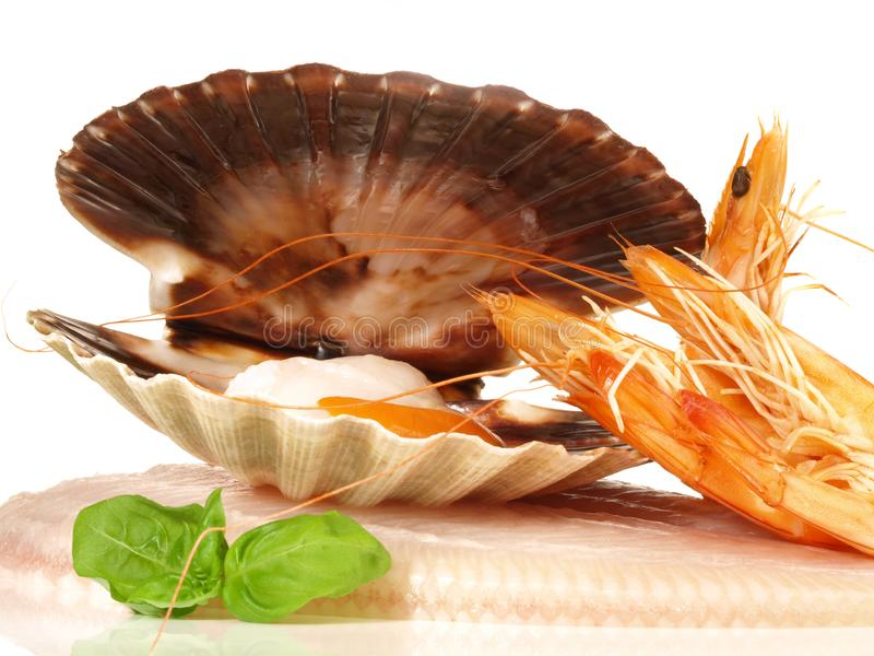 Sole with Shrimps - Seafood on Withe stock image