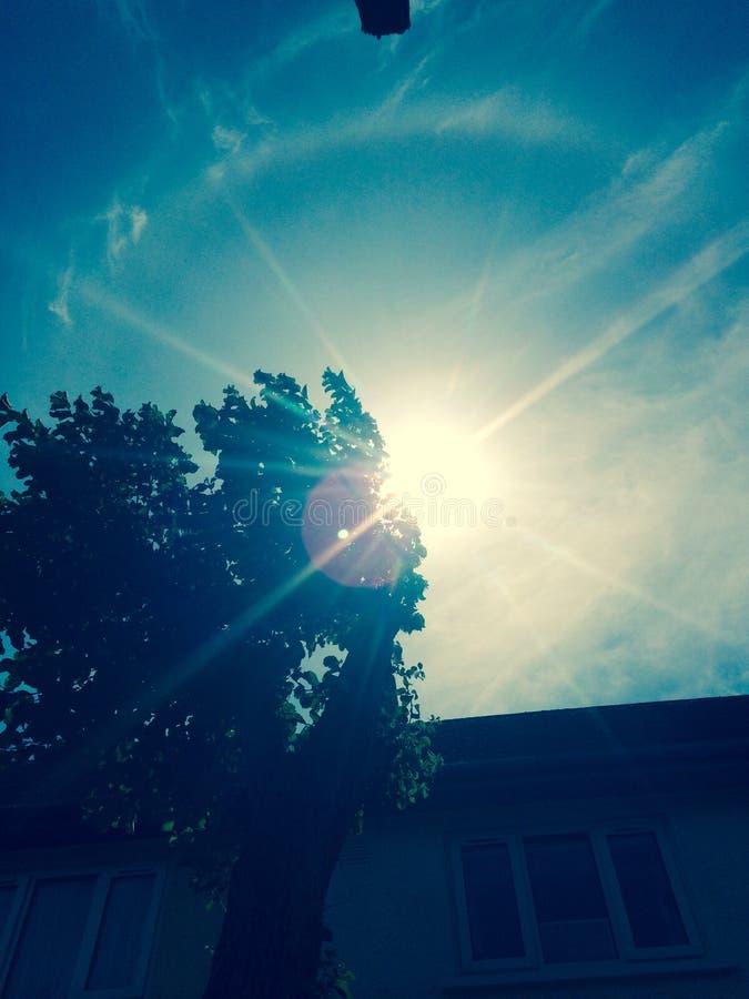 soleil photo libre de droits