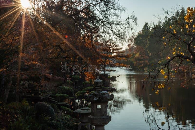 Star Autumn Sun. Photo of an autumn landscape with the rays of the sun through the trees stock photo