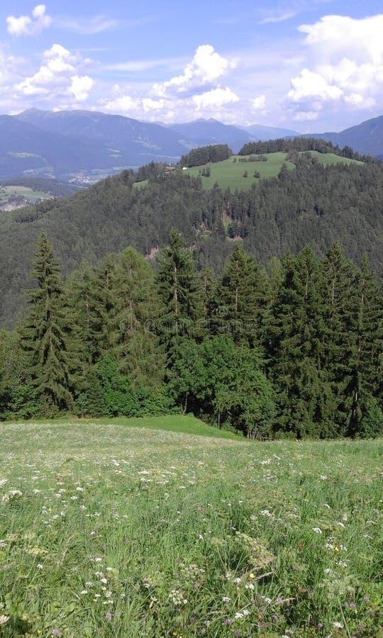 Soleil dans Southtirol photographie stock libre de droits
