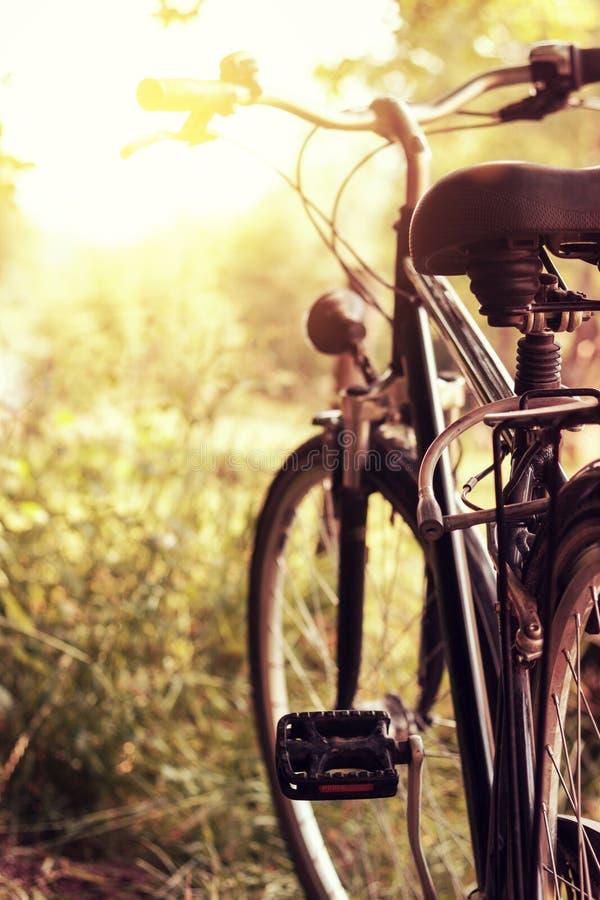Soleil et bicyclette debout à la nature image stock
