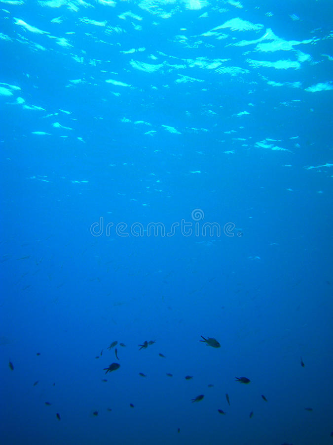 Soleil sous-marin image stock
