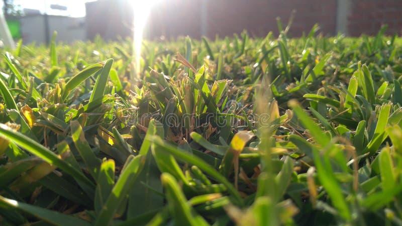 Solen exponerar jordningen royaltyfri foto