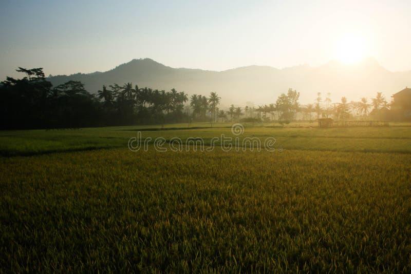 Solen stiger på berget royaltyfria foton