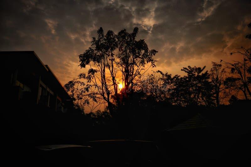 Solen treen himmelmolnskugga arkivfoto