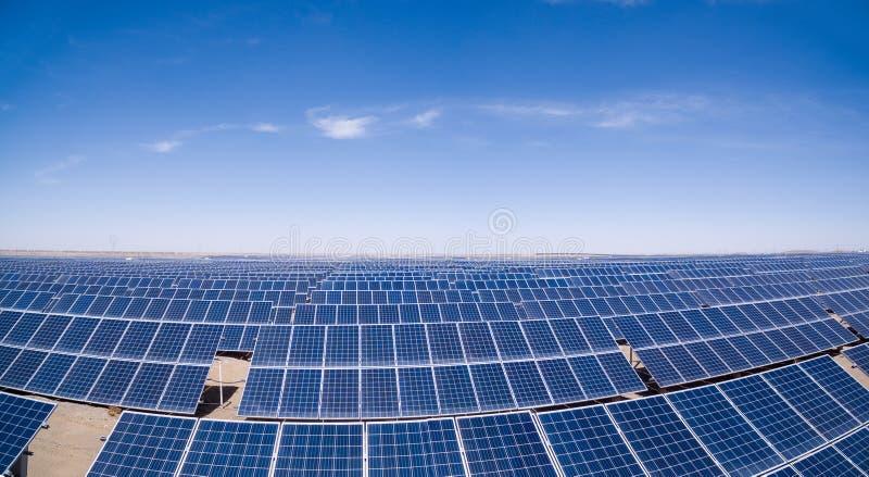 Solenergiväxter i gobi royaltyfri foto