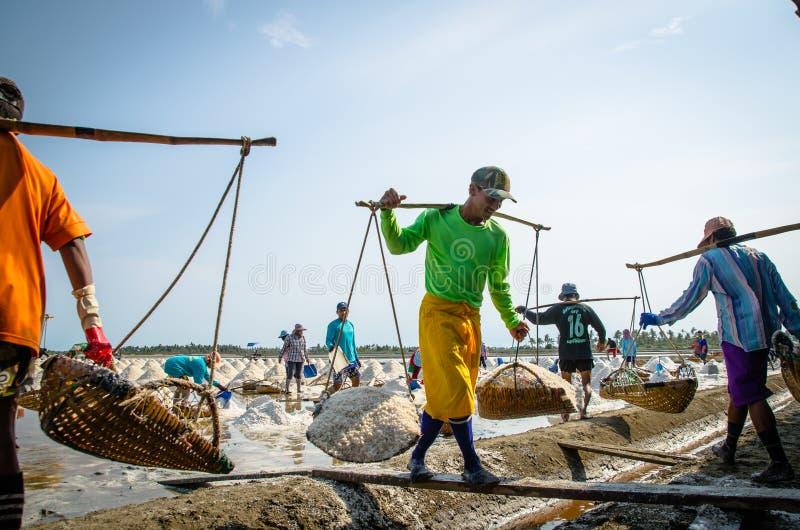 Soleni robotnicy rolni obrazy royalty free