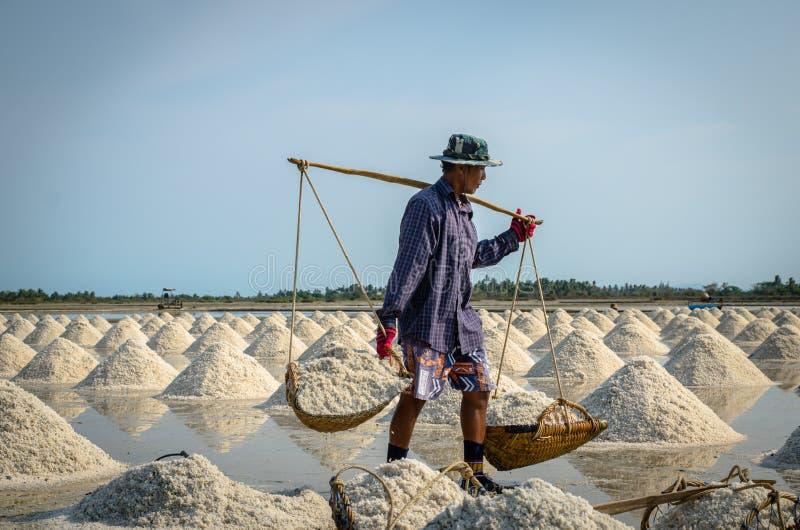 Soleni robotnicy rolni zdjęcie stock