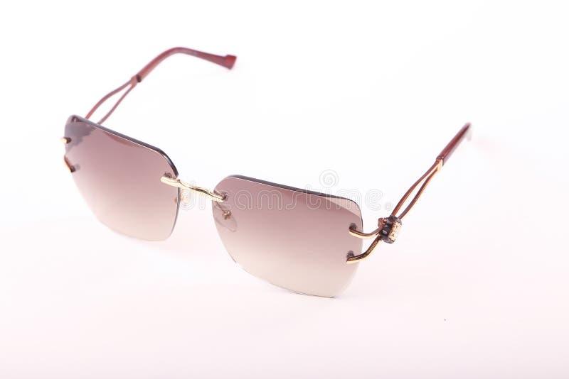 Solglasögon för moderna kvinnor arkivbild