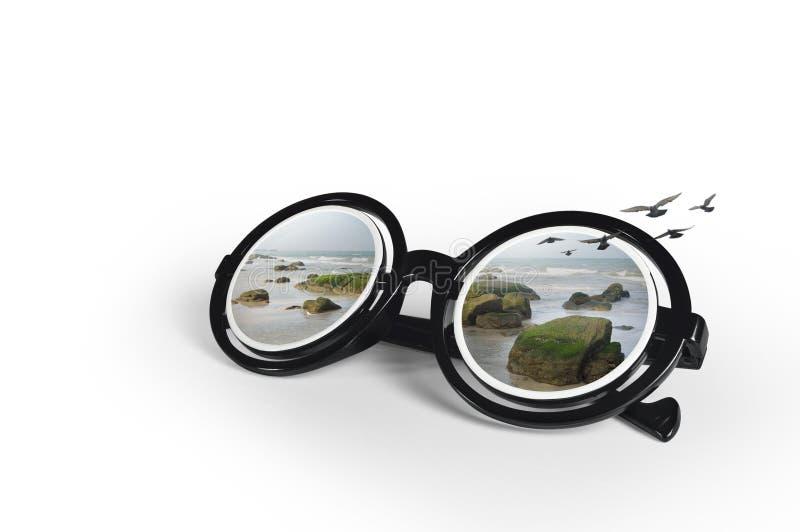 Solglasögon med en tropisk strand och flygseagulls arkivbilder