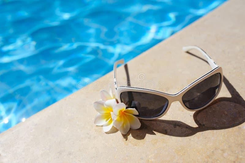 Solglasögon och vita blommor av den near pölen för bougainvillea arkivbilder