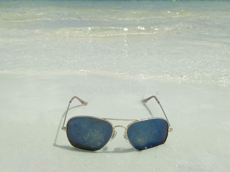 Solglasögon på stranden royaltyfri fotografi