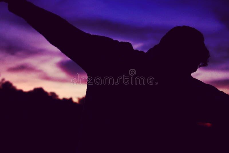 Solha na noite do por do sol fotografia de stock royalty free