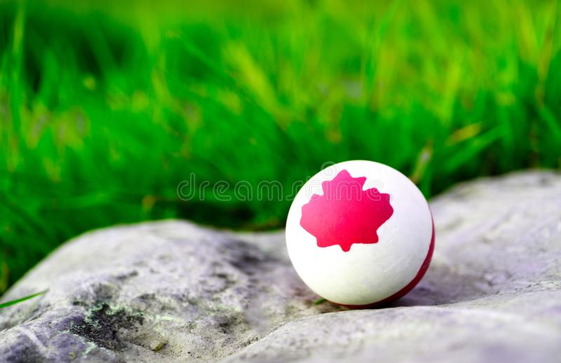 A solid rubber white ball on which is drawn a maple leaf symbol of Canada. The background is green grass. And stone stock photography