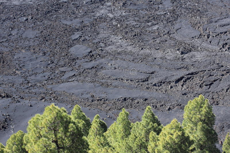 Download Solidified Lava On La Palma, Canary Islands Stock Photo - Image: 41064092