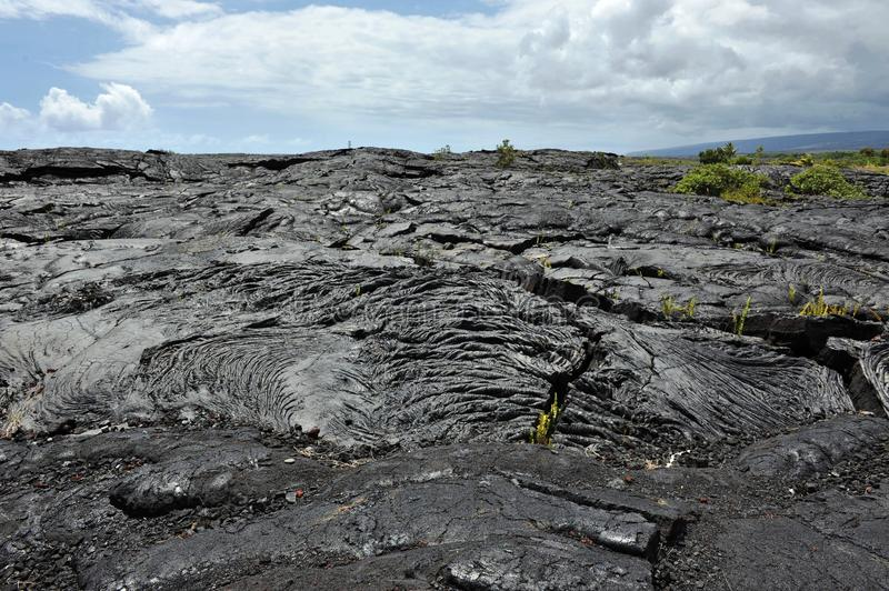 Solidified Pahoehoe Lava Flow, Hawaii Big Island. Solidified Pahoehoe Lava Flow on the Big Island of Hawaii. This billowy and ropy texture is formed because lava stock photo