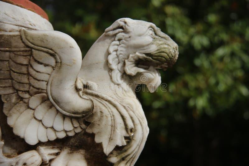 solidny Sztuka lew Z skrzyd?o miejscowego Topicznym stylem obraz royalty free