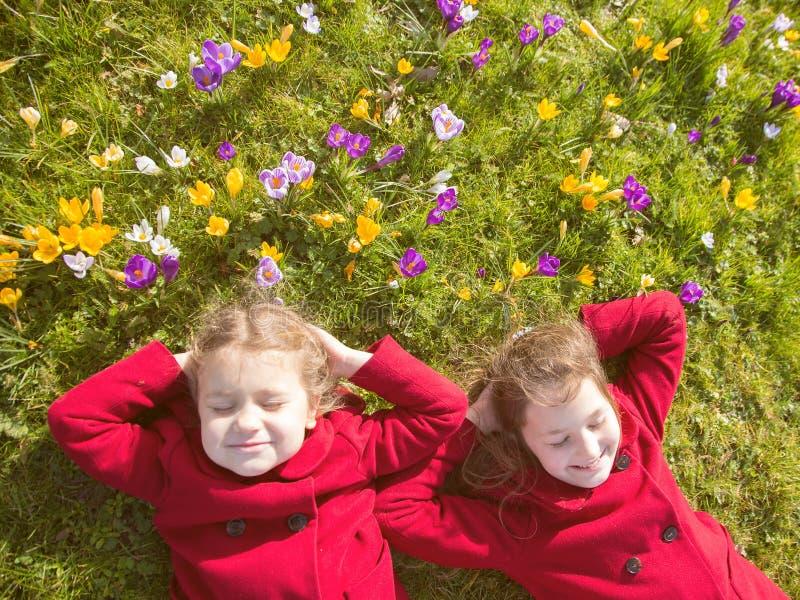 Solig dag för vår, första blommor och lyckliga barn royaltyfri bild