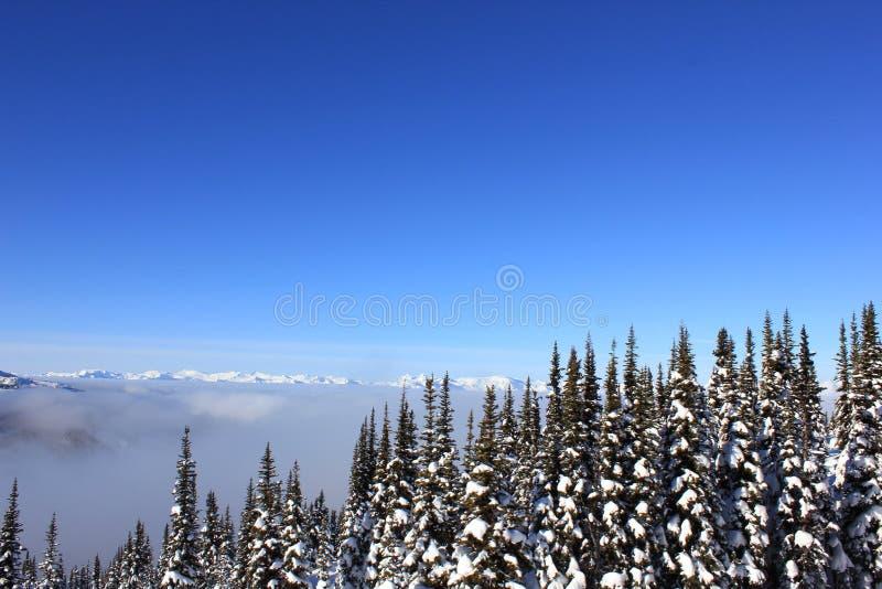 Solig dag i en winterwonderland i härlig whistler i Kanada, brittiska columbia royaltyfri foto