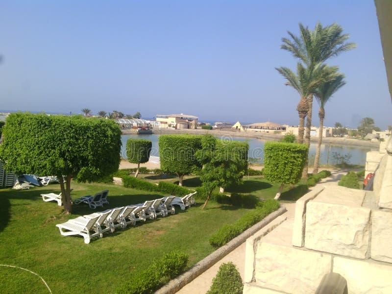 Solig dag på en semesterort i Egypten royaltyfri fotografi