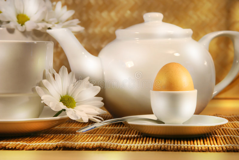 solig frukostmorgon arkivfoton