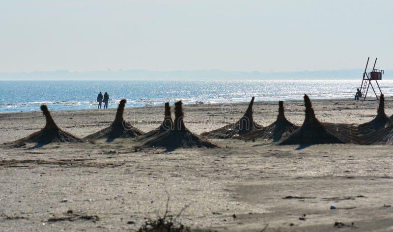 Solig höstmorgon på kusten av Blacket Sea på den Navodari stranden arkivfoton