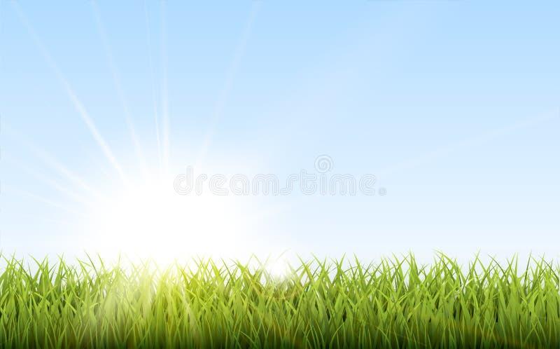 Solig naturlig bakgrund med vektorsolen och gräs vektor illustrationer