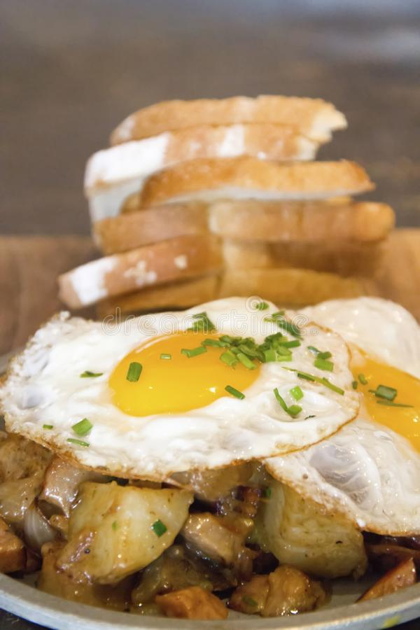 Solig sida upp äggfrukosten royaltyfri foto