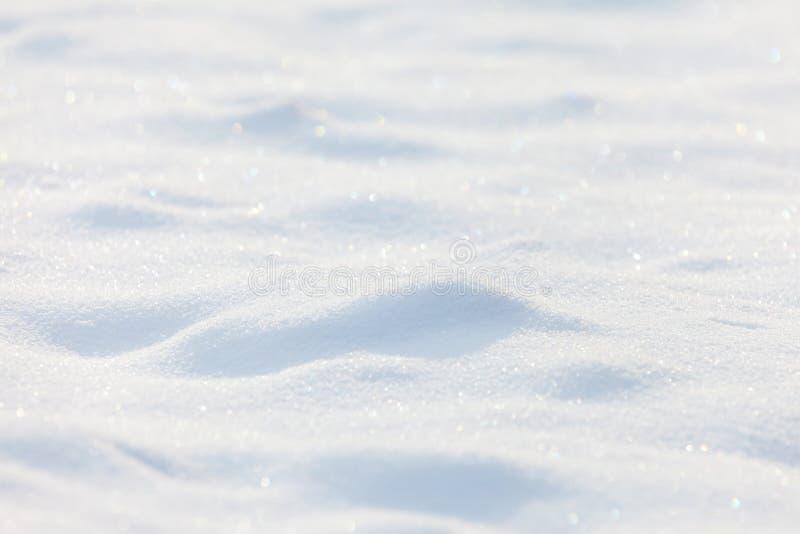 Solig snowbakgrund royaltyfri fotografi