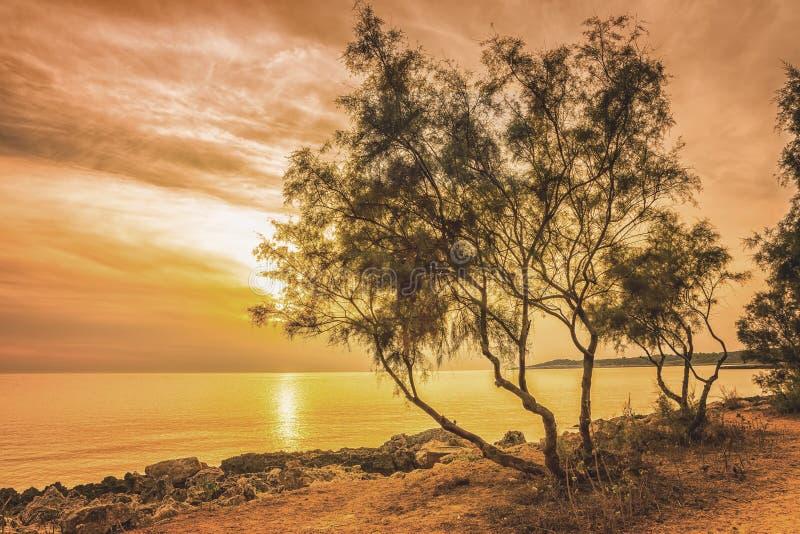 Solig solnedgång på Mallorcaen arkivbild