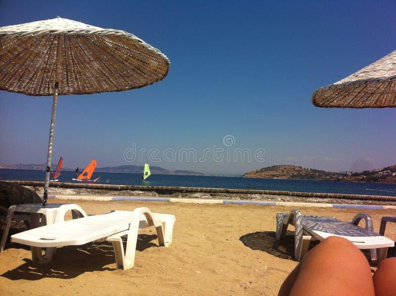 Solig strand royaltyfri foto