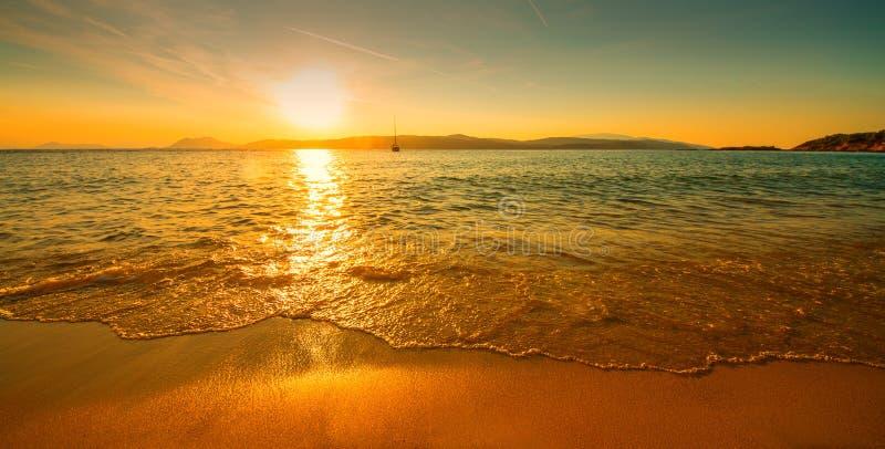 Solig strand för solnedgång arkivbilder