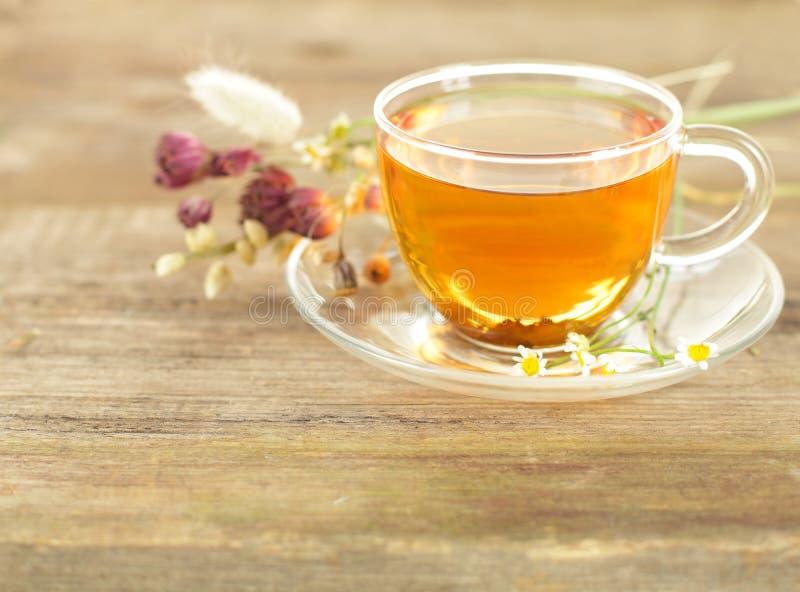 solig tea för morgon arkivbild