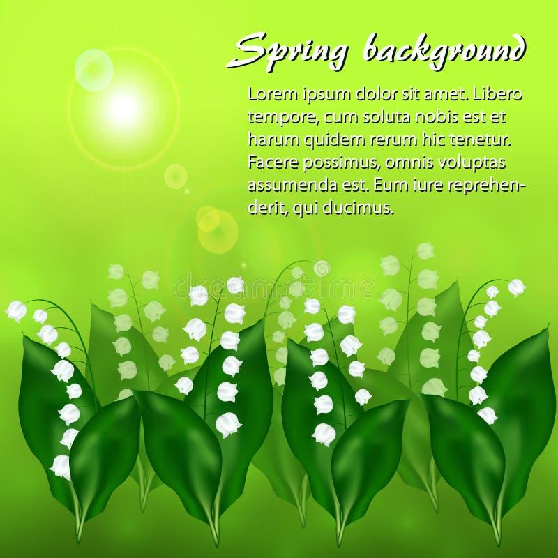 Solig vårbakgrund med liljekonvaljblommor stock illustrationer