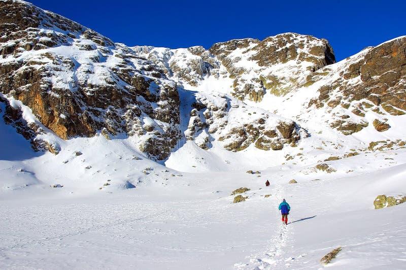 solig vinter för berg royaltyfri fotografi