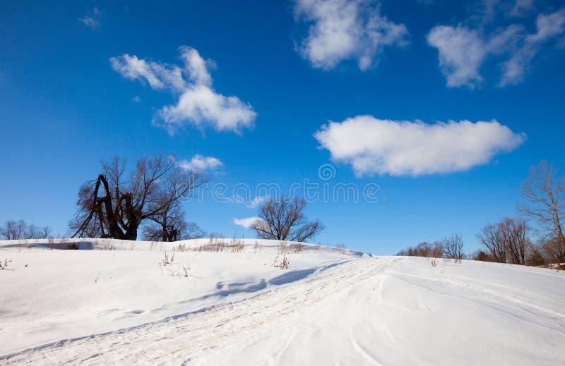solig vinter för liggande arkivfoton