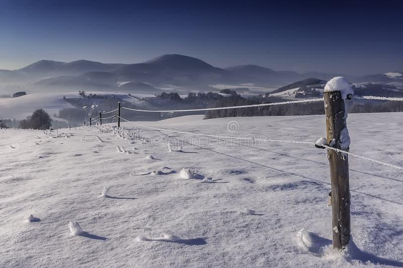 solig vinter för liggande fotografering för bildbyråer