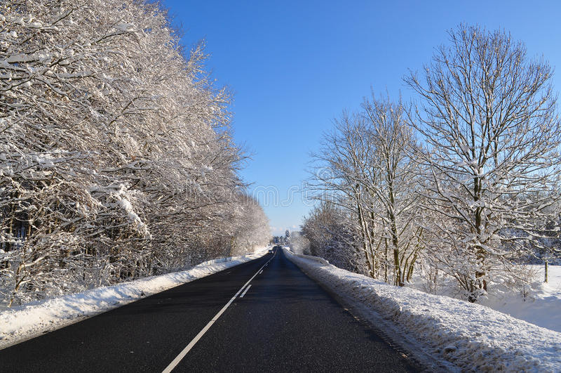 solig vinter för väg royaltyfria foton