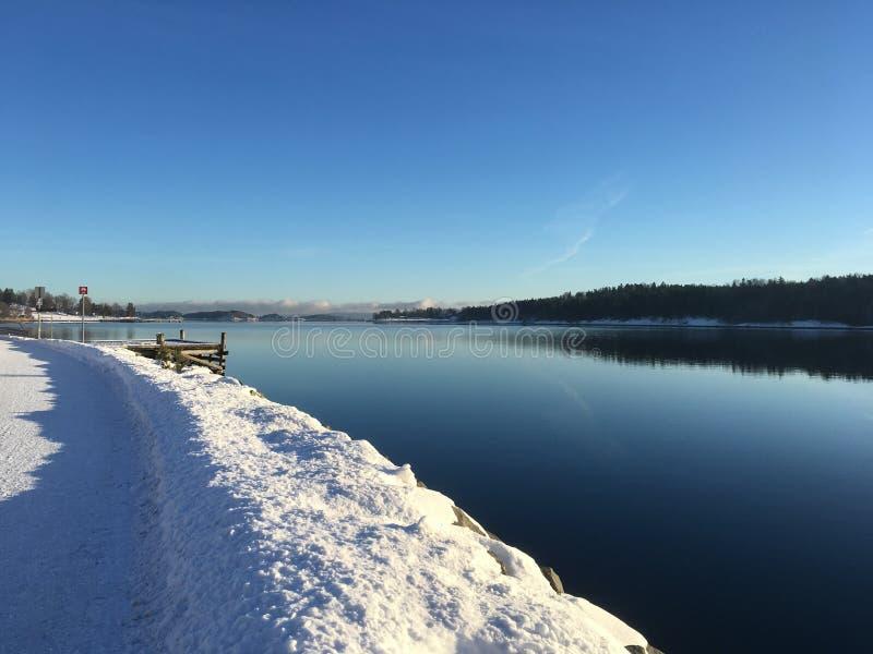 Solig vinter i Norge fotografering för bildbyråer