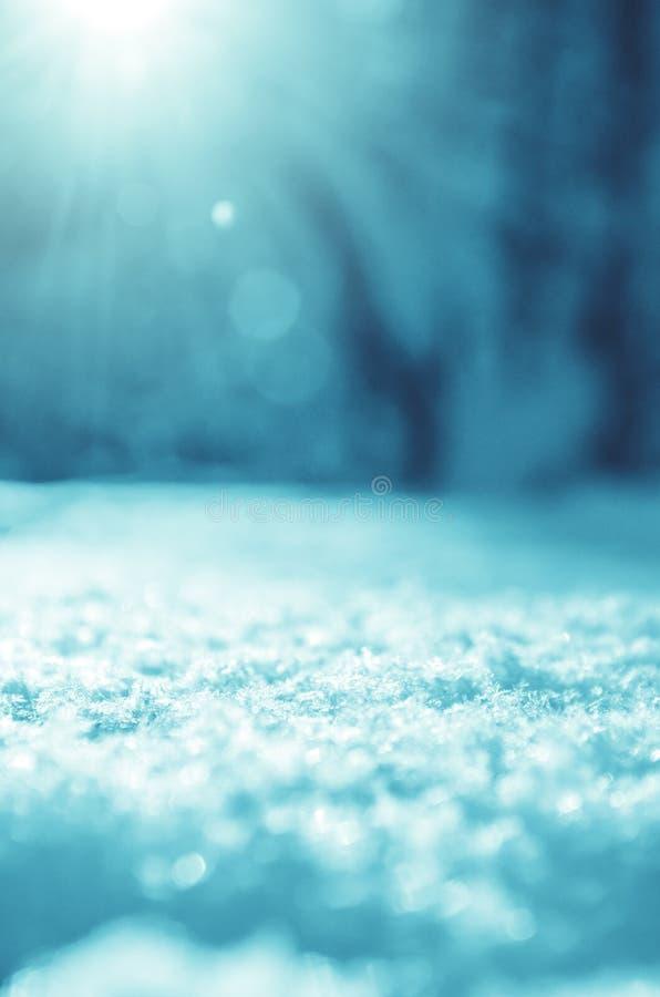 Solig vinterjulbakgrund med snödrivan på en förgrund och suddigt skoglandskap på en bakgrund royaltyfria bilder