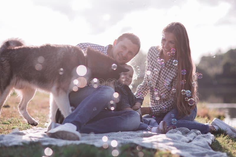 soliga bilder av ett lyckligt gift par med en hund och ett barn royaltyfri bild