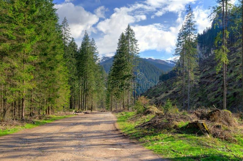 Soligt berglandskap för vår arkivbilder