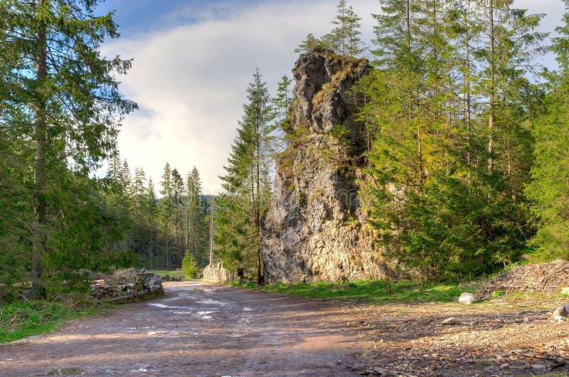 Soligt berglandskap för vår arkivbild