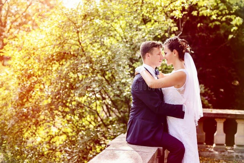 Soligt bröllopfoto för sommar av bruden och brudgummen arkivfoto