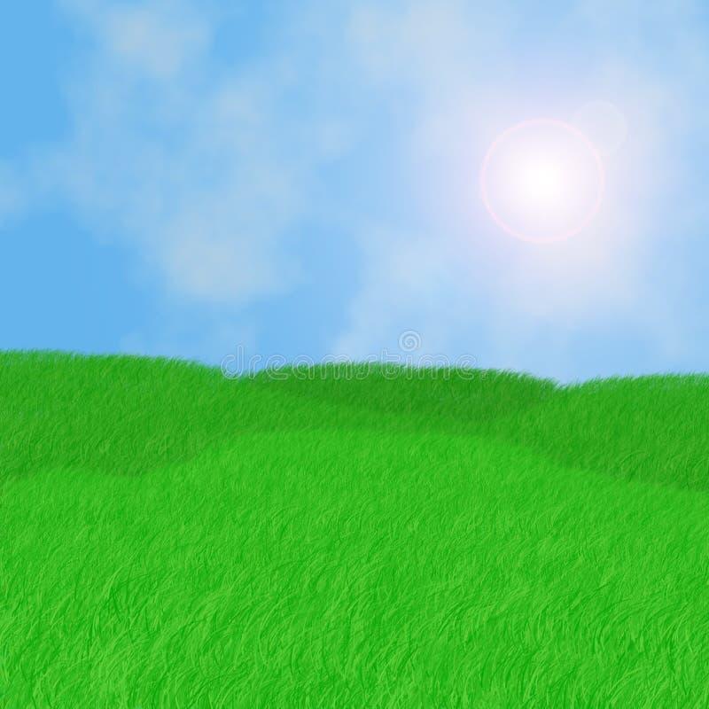soligt dagfält vektor illustrationer