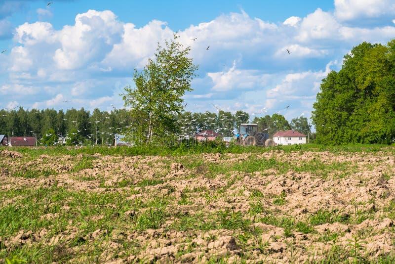 Soligt landskap av bygden i början av sommar En traktor plogar fältet arkivbild