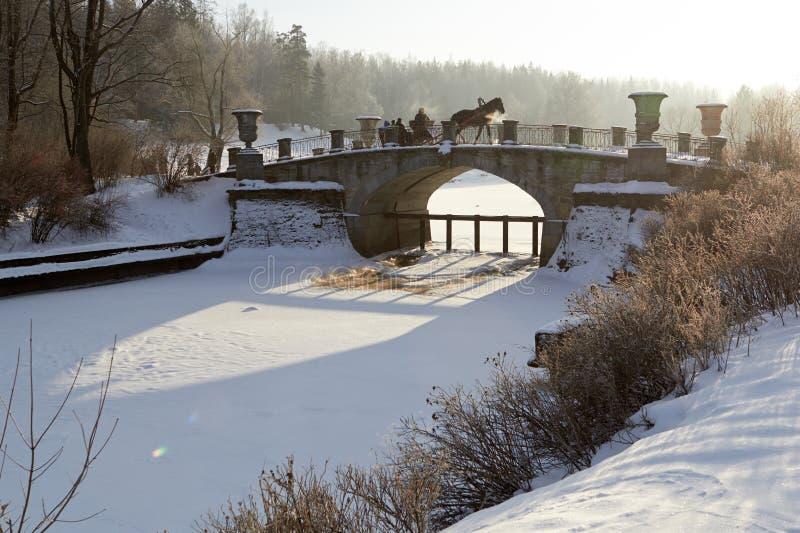 Soligt landskap för vinter med den hästdragna vagnen fotografering för bildbyråer