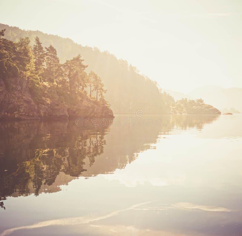 Soligt landskap med en vattnig yttersida arkivbilder