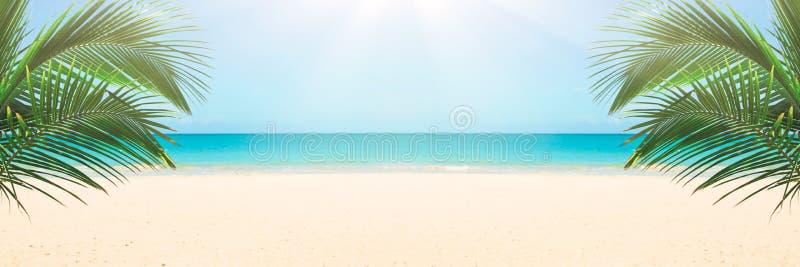 soligt tropiskt för strand royaltyfri bild