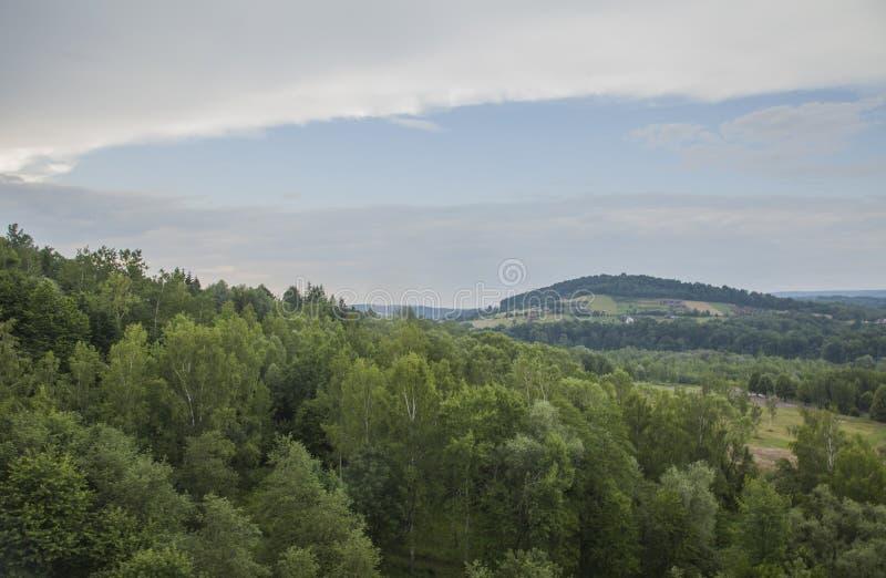 Solina Lake, sud Polonia, Europa Orientale - prati intorno  fotografie stock